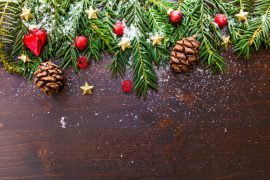 branch-celebration-christmas-christmas-ornament-188971